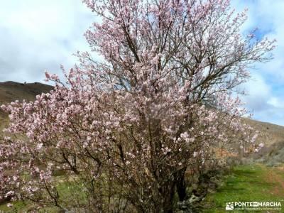 Cañón Caracena; Encina  Valderromán; viajes de fin de semana desde madrid luna llena patones